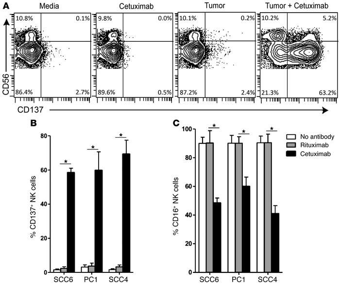 Cetuximab induces CD137 upregulation on human NK cells following incubat...