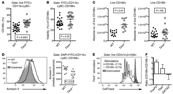 The presence of tissue-resident FITC+CD11b+Ly6C–CD169+ macrophages is i...