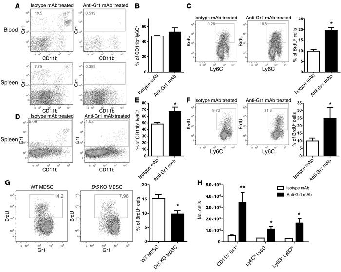 Short life-span of MDSCs contributes to their expansion. (A–F) Naive mic...