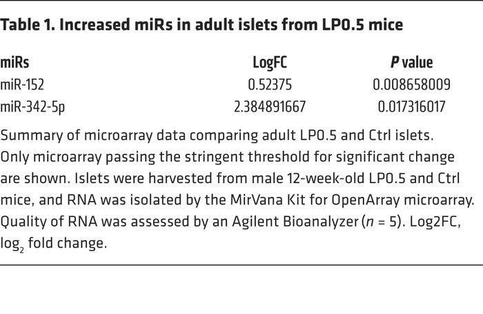 Increased miRs in adult islets from LP0.5 mice