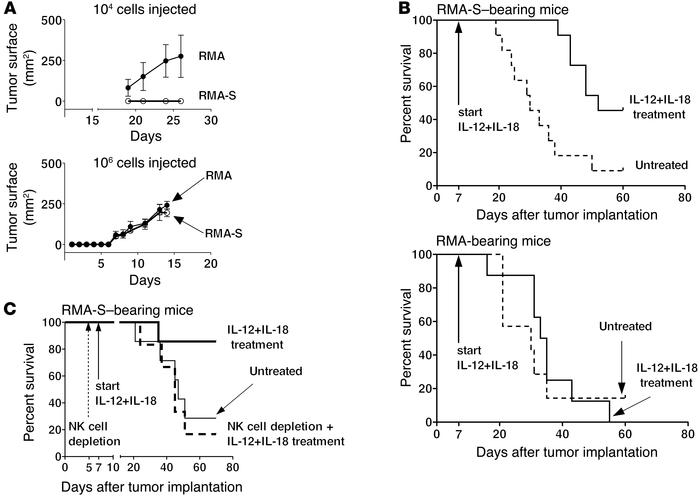 IL-12+IL-18 treatment increases survival of mice bearing MHC class I–def...