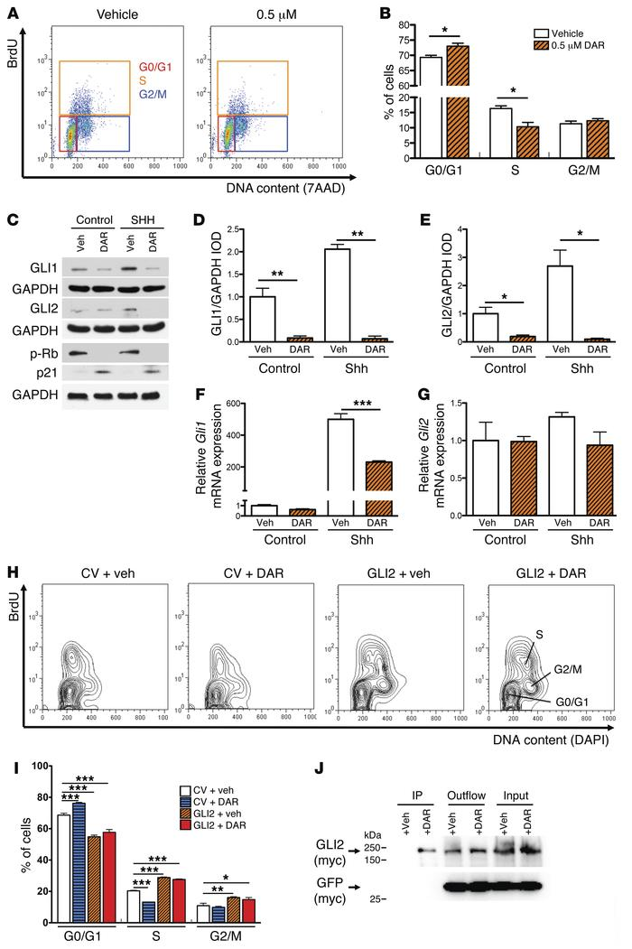 Darinaparsin reduces GLI protein levels and induces cell-cycle arrest in...