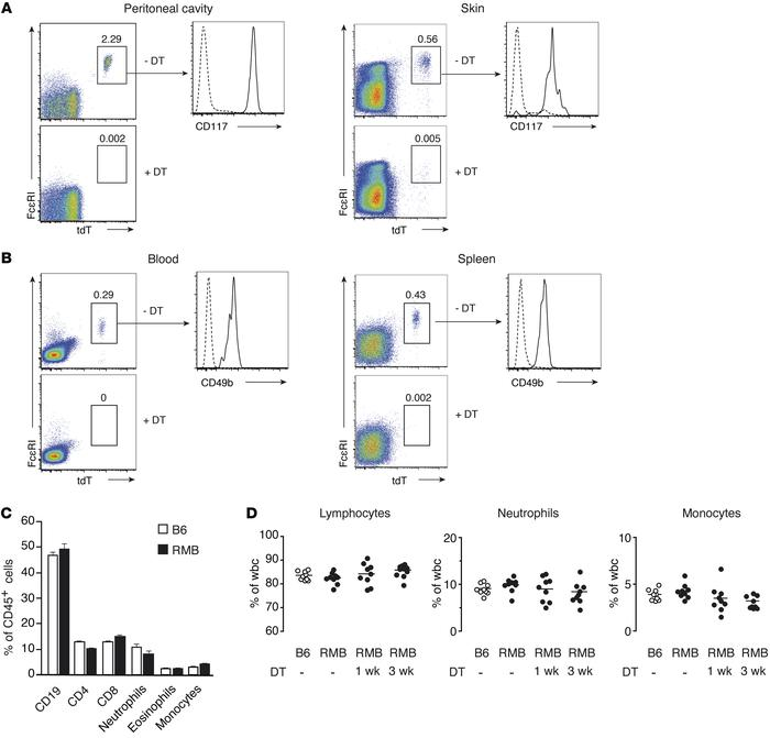 Visualization and efficient depletion of mast cells and basophils in RMB...