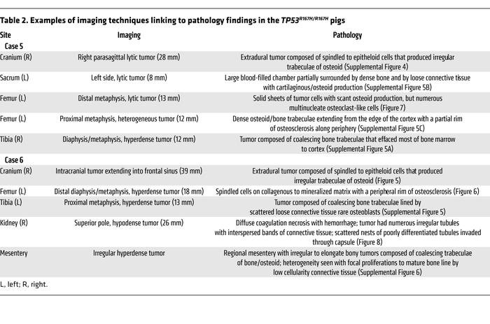 Examples of imaging techniques linking to pathology findings in theTP53R...