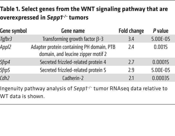 Select genes from the WNT signaling pathway that are overexpressed in Se...