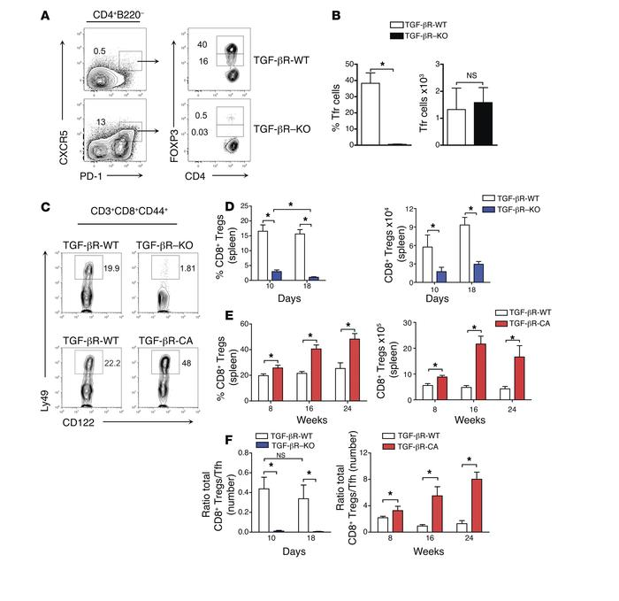 Lack of peripheral CD8+ Tregs in the absence of TGF-β receptor signaling...