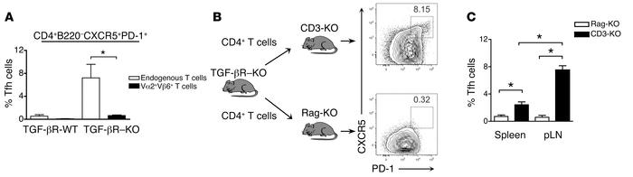 Spontaneous Tfh cell accumulation was dependent on TCR and B cell signal...