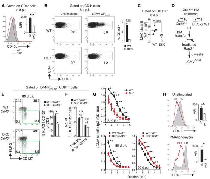 STIM1 and STIM2 control the maintenance of CD8 memory and generation of ...