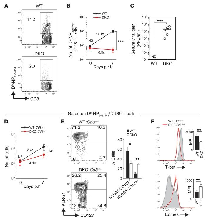 STIM1 and STIM2 in CD4+ T cells are essential for recall responses to vi...