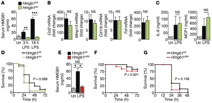 HMGB1 does not mediate LPS-induced inflammation and lethality. Hmgb1fl/f...