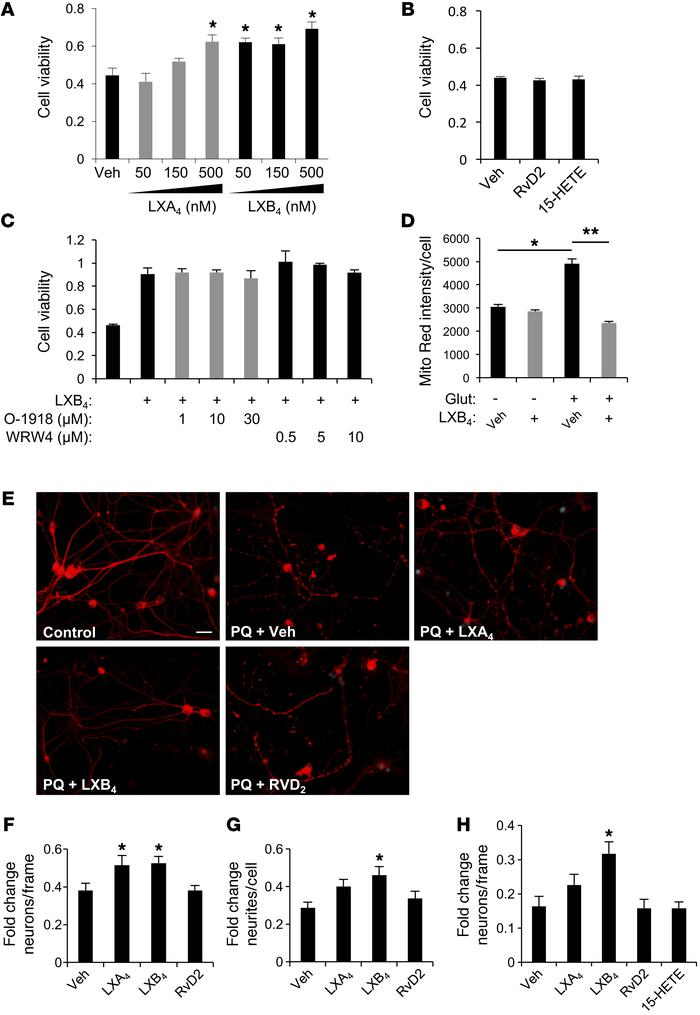 LXA4 and LXB4 have direct neuroprotective activities. (A) Treatment of H...