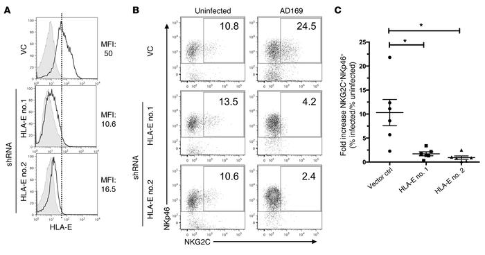 shRNA-mediated knockdown of HLA-E on infected cells critically impairs N...