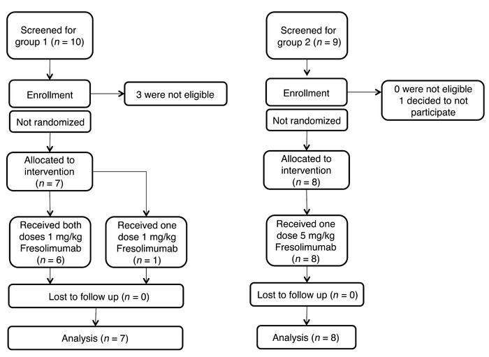 CONSORT flow diagram. Schematic of patient screening, enrollment, and co...