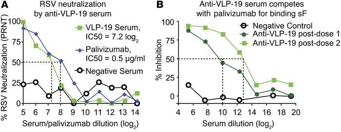 Murine anti–VLP-19 sera neutralize RSV and competes with palivizumab. (A...
