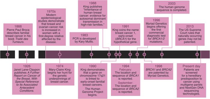 A timeline of the search for the genetic underpinnings of early-onset fa...