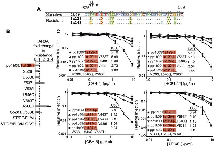 V538I/L546Q/V563T mutations in E2 confer additive sensitivity to NC1 mAb...