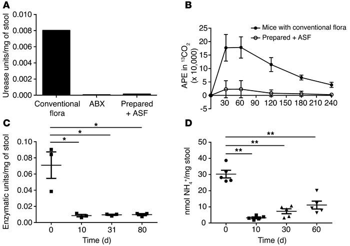 Transfer of ASF leads to a reduction in urease activity and fecal ammoni...
