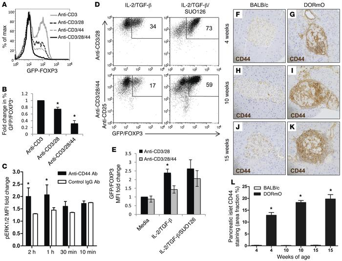 4-MU treatment promotes FOXP3 induction. (A) FOXP3 levels following indu...