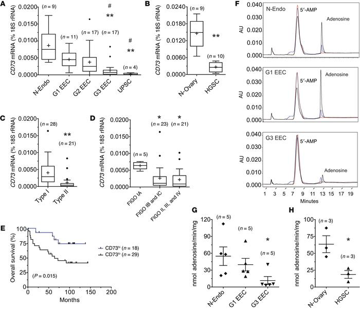 CD73 mRNA levels and specific activity are downregulated in high-grade,...