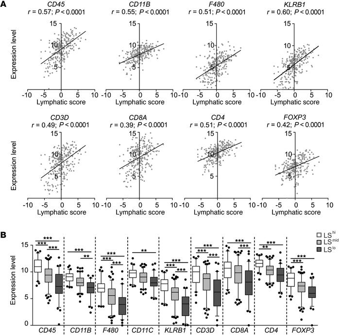 Lymphatic gene expression correlates with immune cell infiltrate in huma...