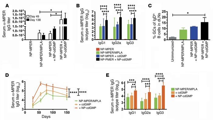 NP-cdGMP elicits durable class-switched humoral responses and synergizes...