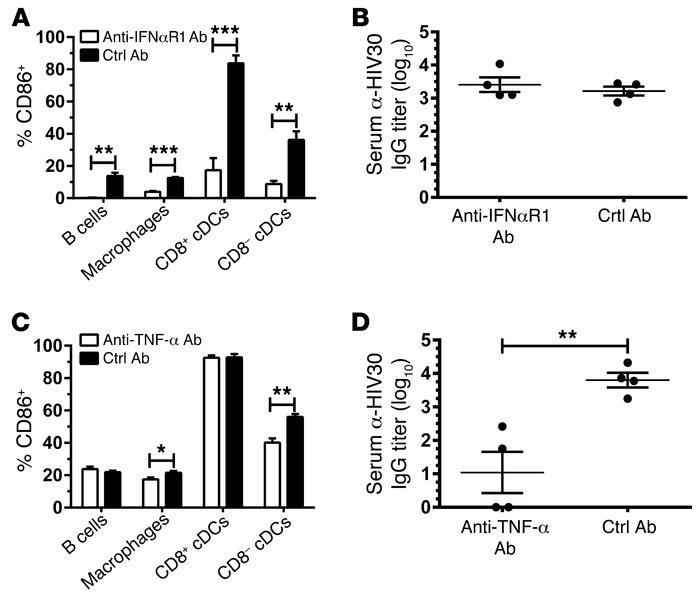 Type I IFN shapes early activation of APCs, while TNF-α is critical for ...