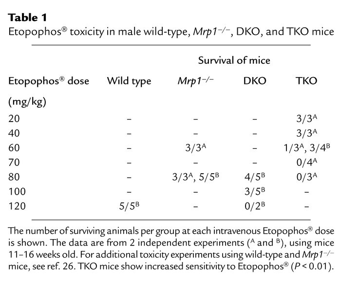 Etopophos® toxicity in male wild-type, Mrp1–/–, DKO, and TKO mice