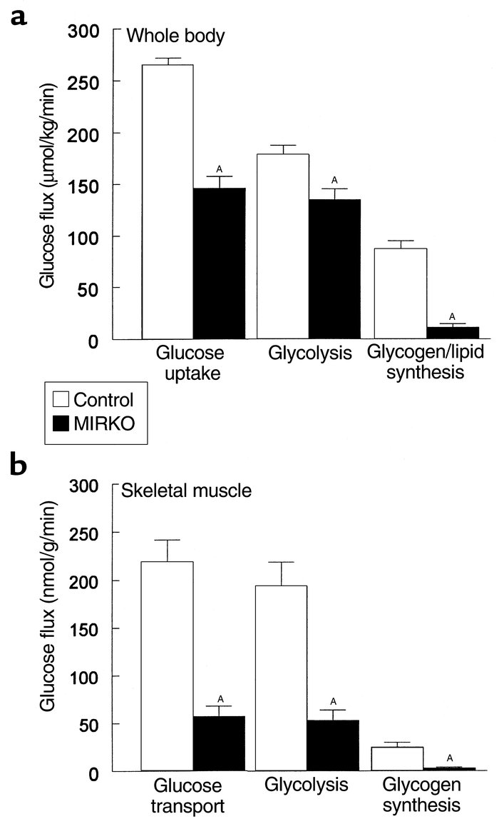 Whole-body and skeletal muscle glucose transport and metabolism. (a) Ins...