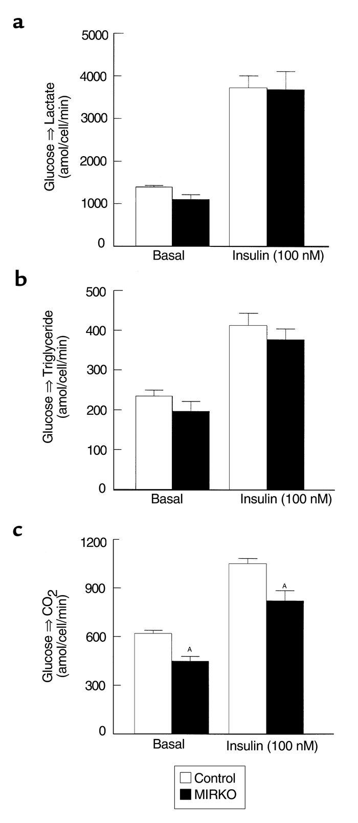Glucose metabolic flux in isolated adipocytes. (a) Basal (left) and insu...