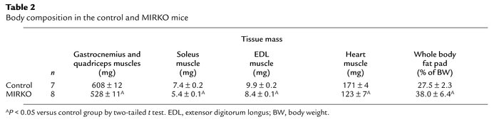 Body composition in the control and MIRKO mice