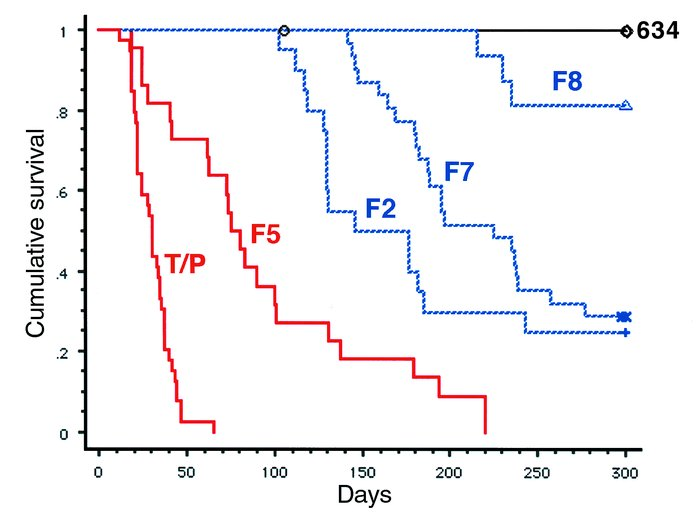 Kaplan-Meier survival analysis of mice transplanted with TEL/PDGFβR and ...