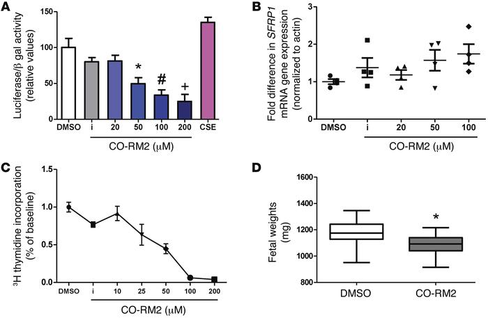Effect of carbon monoxide analogs on canonical WNT transcriptional activ...