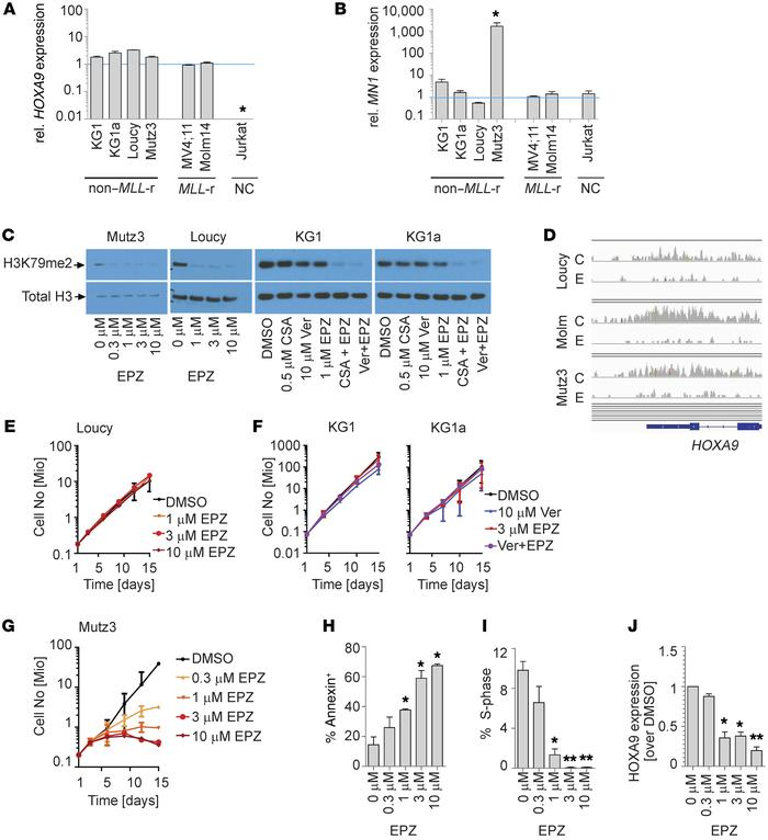 MN1hi/HOXA9hi Mutz3 cells respond to DOT1L inhibition while several oth...