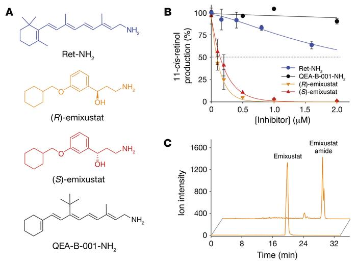 Inhibition of RPE65 by retinol analogs and formation of emixustat amide....