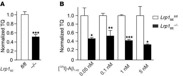 LRP1 in brain endothelial cells substantially contributes to [125I] Aβ1–...