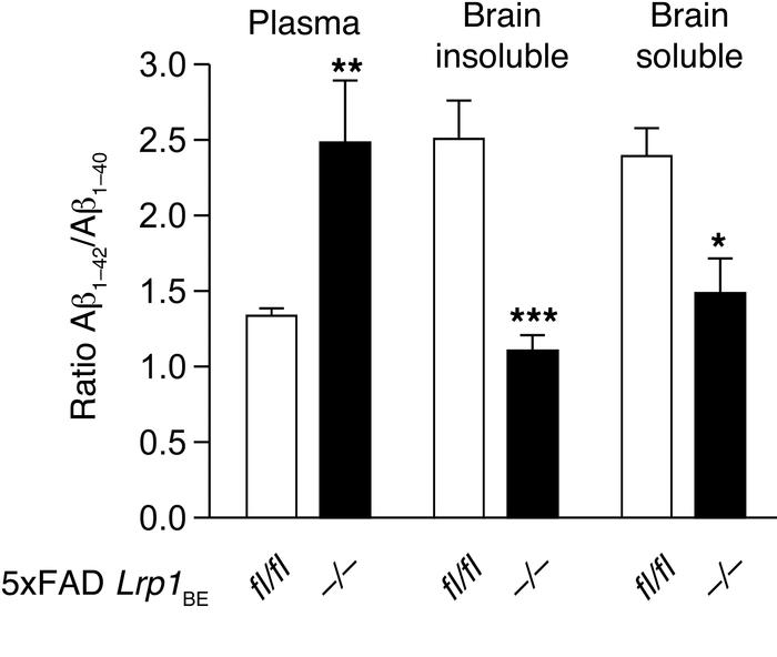 Preferential clearance of Aβ1–40 species by brain endothelial LRP1. Cont...