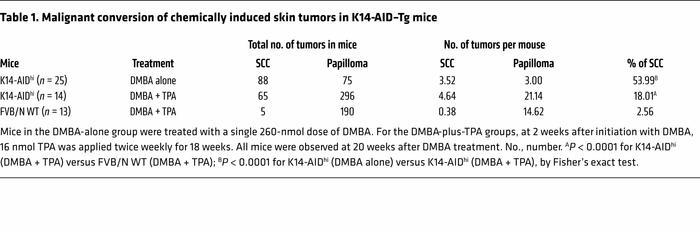 Malignant conversion of chemically induced skin tumors in K14-AID–Tg mice