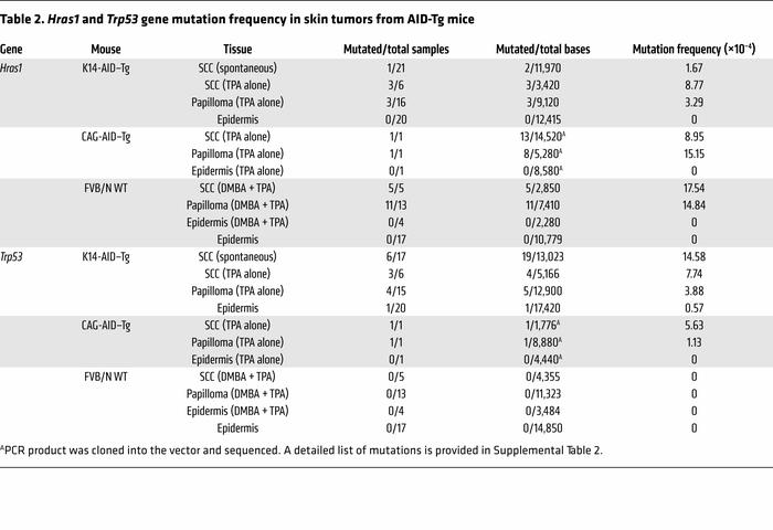 Hras1 and Trp53 gene mutation frequency in skin tumors from AID-Tg mice