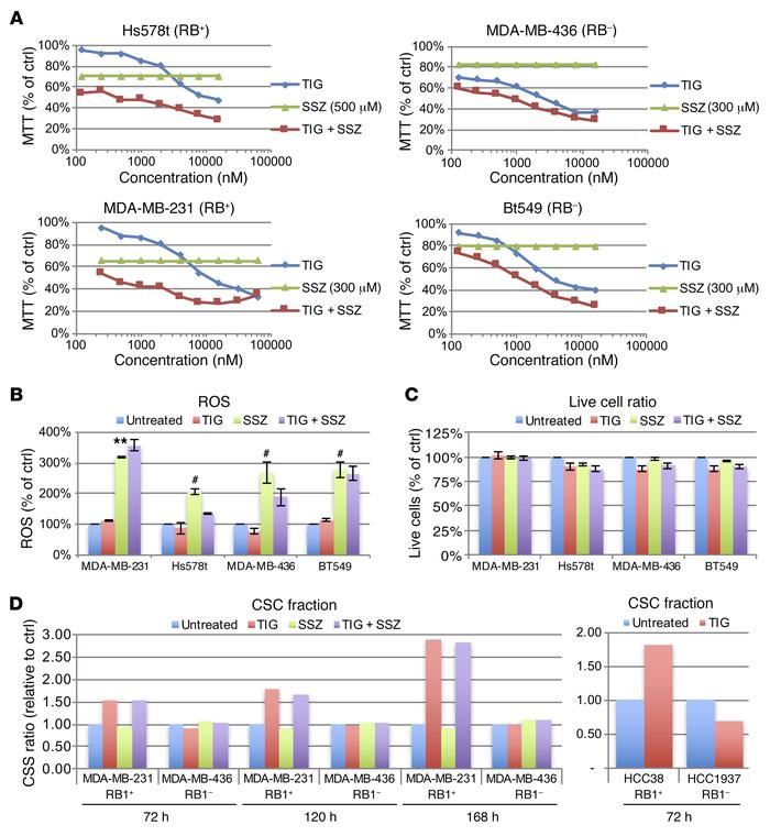 Effects of TIG and SSZ on RB1/TP53-deficient TNBC cell lines. (A) MTT as...