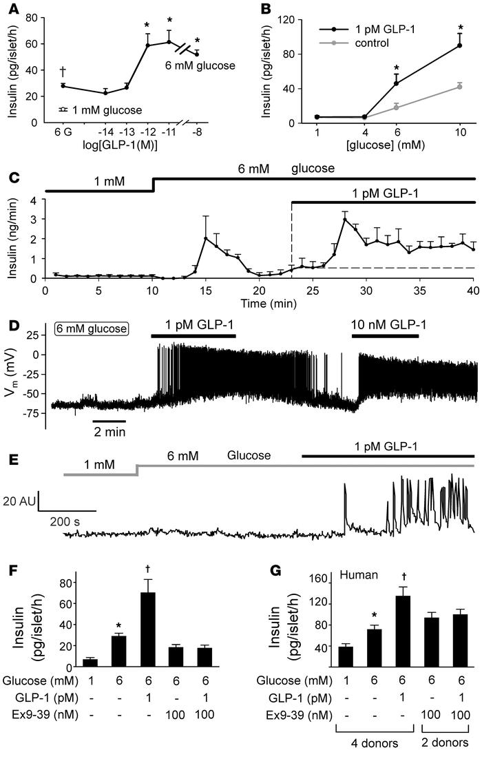 Stimulatory effects of picomolar concentrations of GLP-1 on insulin secr...
