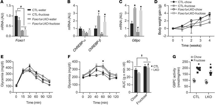 Fructose activates ChREBP and induces G6PC and glycerol intolerance inde...