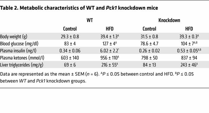 Metabolic characteristics of WT and Pck1 knockdown mice