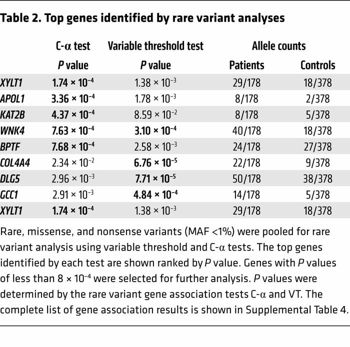 Top genes identified by rare variant analyses