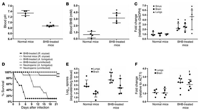 BHB administration in mice lowers blood pH, increases GRP78 expression i...