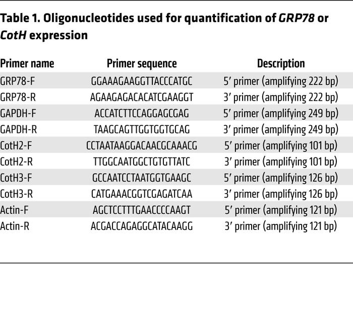 Oligonucleotides used for quantification of GRP78 or CotH expression