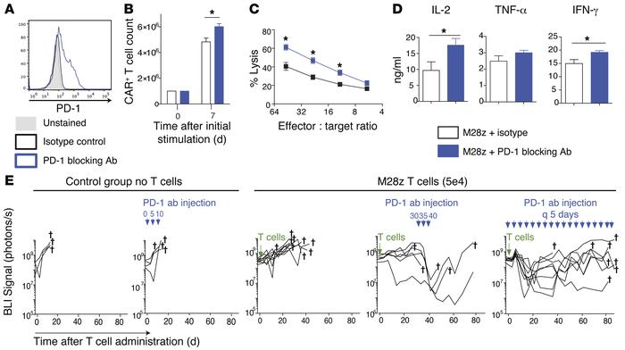 PD-1–blocking antibody restores the effector function of exhausted M28z ...