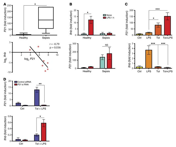 p21 regulates hyporesponsiveness of human monocytes from healthy donors ...