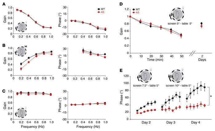 AS mice show only mild specific cerebellar deficits. Baseline compensato...