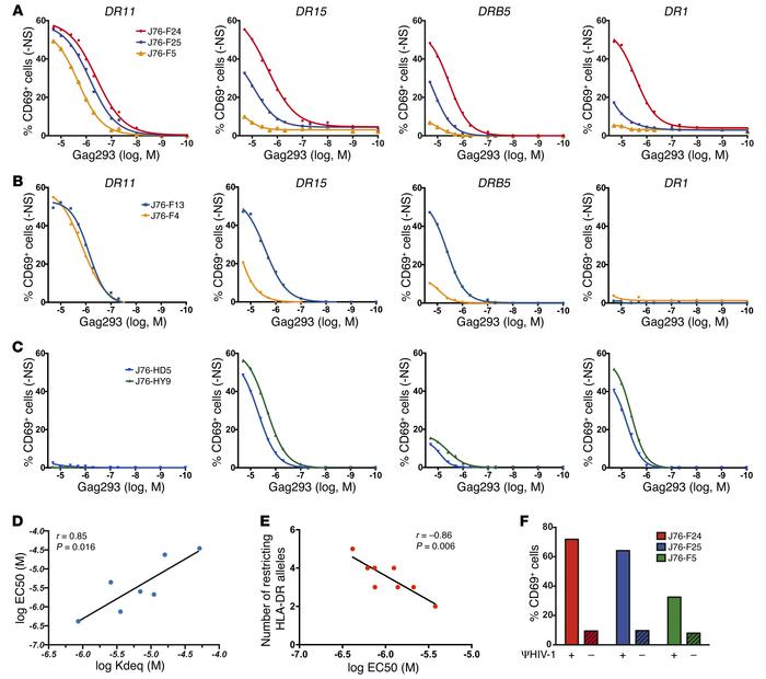 Public TCR transfer confers high antigen sensitivity to J76 cells. (A an...