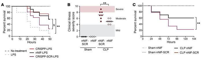 nNIF and CRISPP improve survival in experimental systemic inflammation. ...